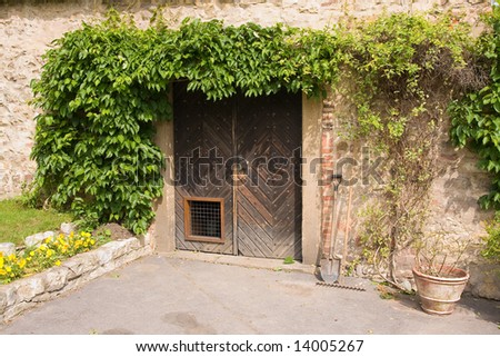 old entrance with with bushes - stock photo