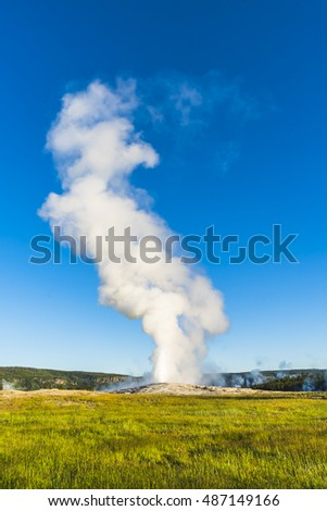 Old faithful when erupting in the morning,summer, in Yellowstone National park,usa.