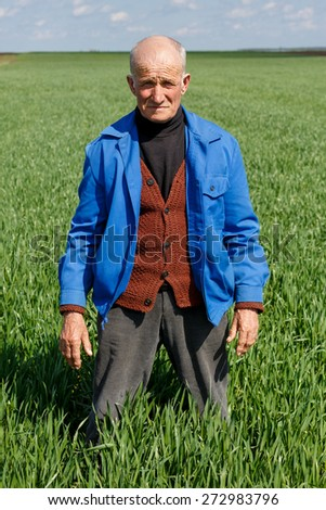 old farmer in a field researching plants - stock photo