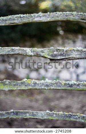 Old fence on vertical format - stock photo