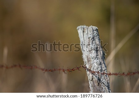 Old fence pole with rusted barbed wire with unsharp background - stock photo