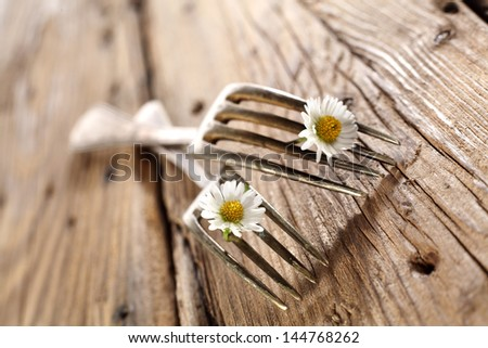 old forks - stock photo