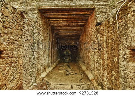 Old gold-pyrite, mine tunnel 1870, Andalusia, Spain - stock photo