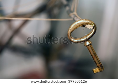 old golden key hanging on a branch close-up - stock photo