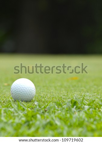 Old golf ball on green tee - stock photo