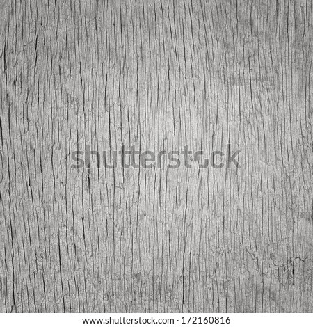 Old grey wooden crack raw board - stock photo