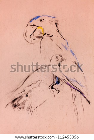 Old,grunge original pastel and  hand drawn sketch of a parrot and pigeon.Free composition - stock photo