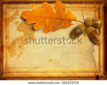 Old grunge paper with autumn oak leaves and acorns - stock photo
