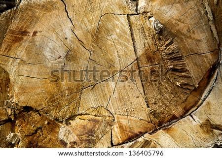 Old Grunge Wood - stock photo