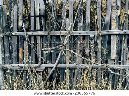Old grungy wooden fence with grass branches - stock photo