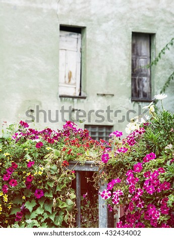 Old house and beautiful flowers in bed. Natural decoration. City park. Street natural decoration. Vertical composition.