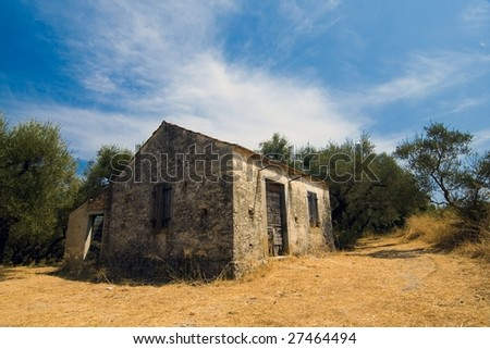 Old house in the middle of olive trees in greece - stock photo