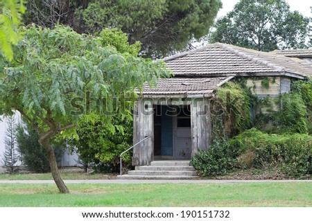 Old house surrounded by vegetation
