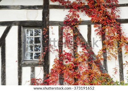 Old house with patterns and window duing autumn, Haute Marne, France