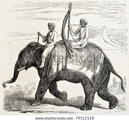Old illustration of an elephant in Oude, antique Indian northern kingdom, By unidentified author,  published on L'Illustration Journal Universel, Paris, 1857 - stock photo