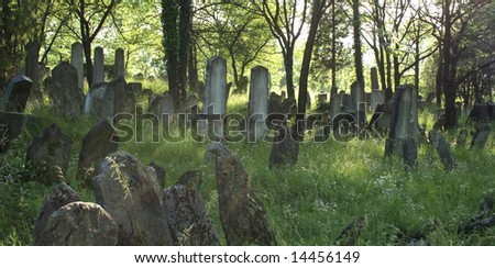 old jewish burial place - stock photo