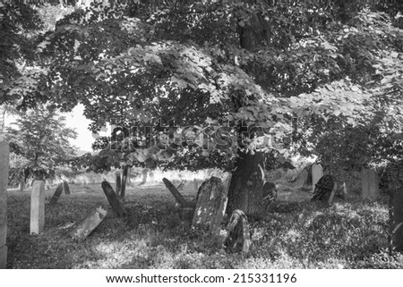 Old jewish cemetery near the town Divisov in the Czech republic in the central Europe - stock photo