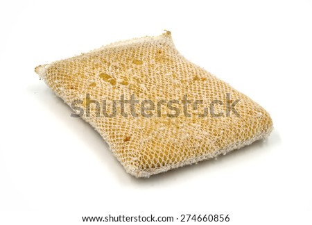 Old kitchen sponge on white background.