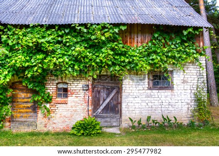 Old lost shack in the forest - stock photo
