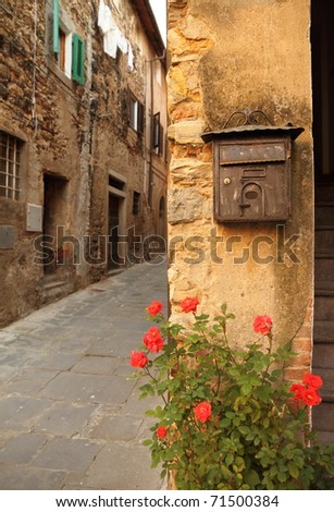 old mailbox and rose on tuscan alley , Italy, Europe - stock photo