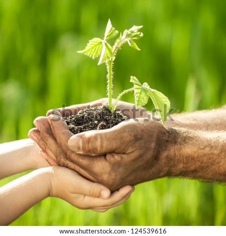 Old man and baby holding young plant in hands against spring green background. Ecology concept - stock photo