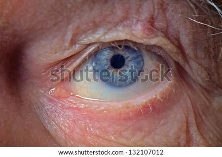 old man face part closeup eye looks at camera - stock photo
