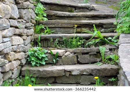 Old medieval cracked steps and weeds  - stock photo