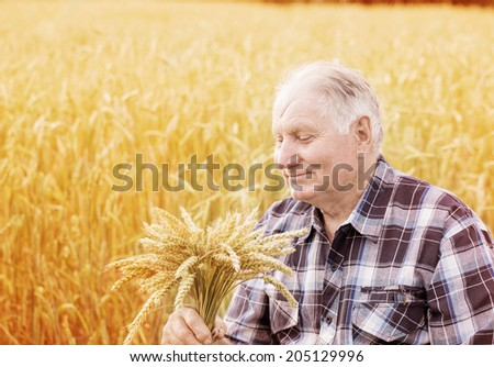 old men  in cereal fields - stock photo