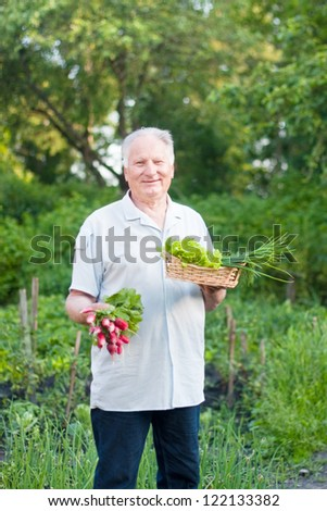 old men in garden - stock photo