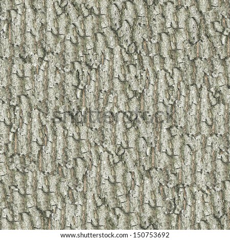 Old Oak Bark. Seamless Texture. - stock photo