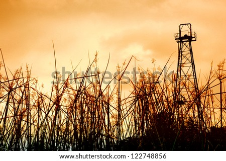 old oil tower and the foreground grass - stock photo