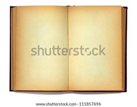 Old open book on white - stock photo