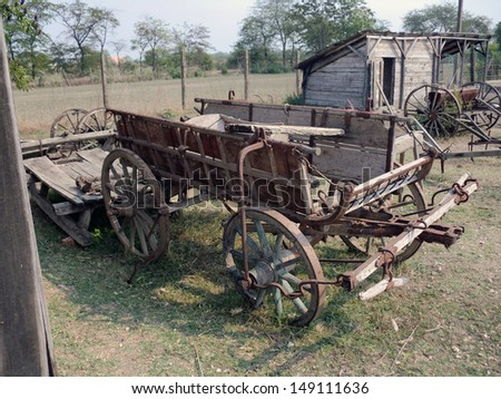 old ox cart in hungary in eastern europe in summer