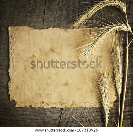 Old paper on wood background with wheat and rye ears - stock photo