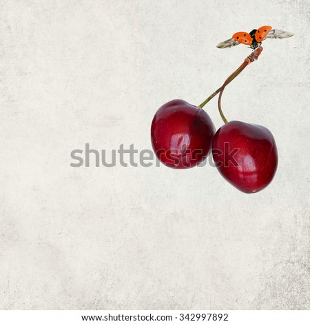 Old paper textured background with cherry fruit surprise gift.  Ladybug with cherry gift surprise  - stock photo