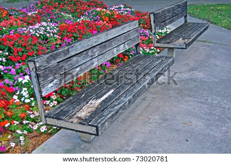 Old Park Benches in Miami with colorful flowers in background - stock photo