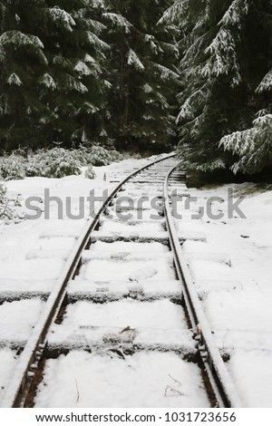 old railway in winter forest