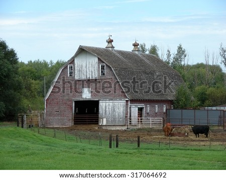 old red barn with cattle and fences - stock photo