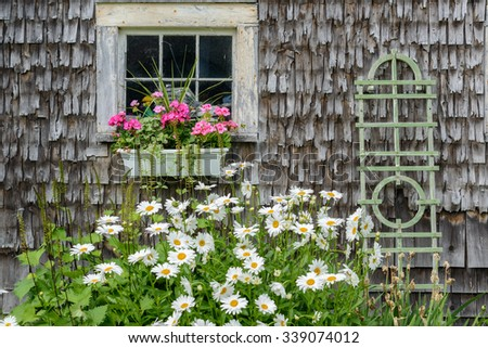 Old restored A-Frame clapboard barn on the Maine coast shows off it's beauty in summer with flowers and flower boxes - stock photo