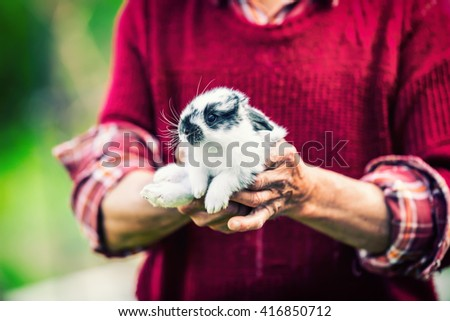 Old retired senior farmer holding a young rabbit in hand. - stock photo