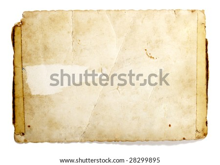 old retro instant film transfer photo reversed  on white background with clipping path - stock photo