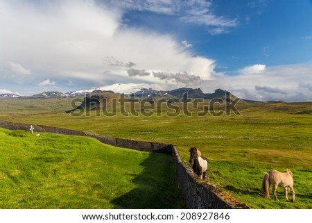 old scenic Icelandic graveyard next to horse pasture, under Snaefellsjokull Glacier - stock photo