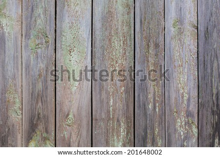 Old Shabby Wooden Planks with cracked color Paint