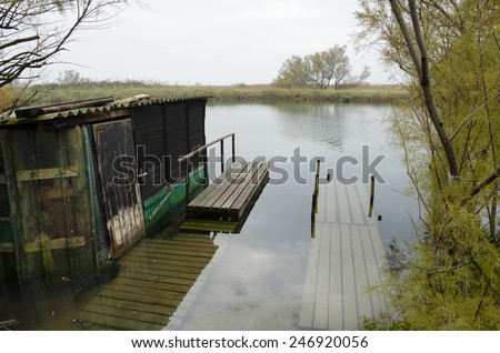 old shack in the swamp - stock photo