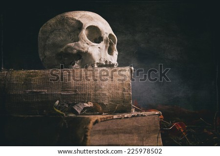 old skull on old book - stock photo