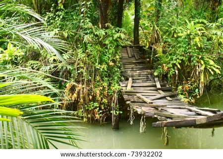 Old small bridge through a river in a tropical forest - stock photo