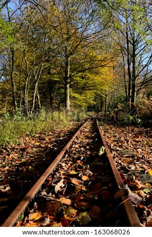 Old small steam engine train tracks leading into a autumn English woods in Wigan, England near Haigh Hall. - stock photo