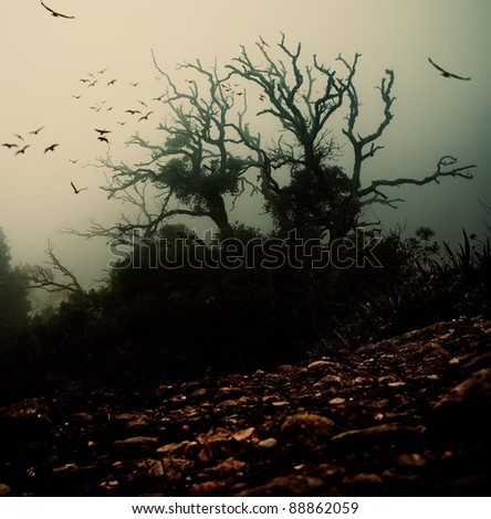 Old spooky tree with birds over it - stock photo