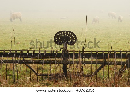 Old spring harrow and sheep in a field off of Fort McKay road between Sutherlin and Oakland OR on a foggy winter morning. - stock photo