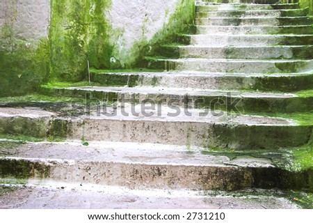 Old stairs covered in green moldy vegetation or algae. - stock photo